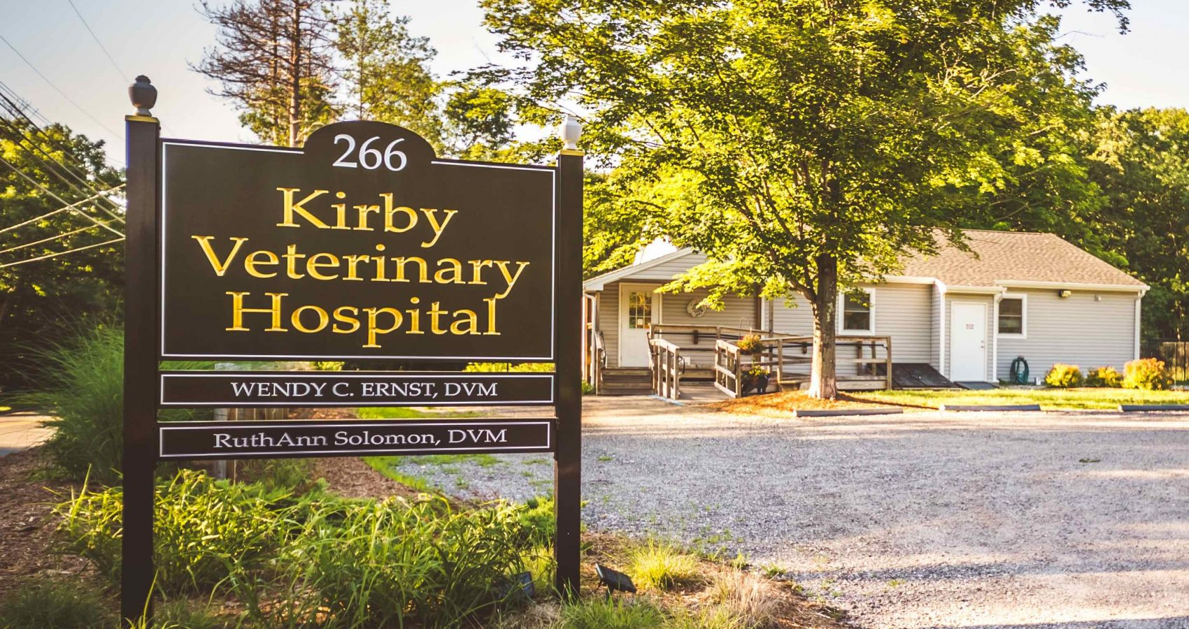Kirby Vet 014 cropped